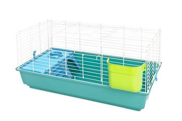 COLORS CAGE SIMPLE RODENTS