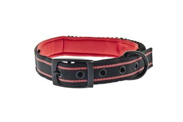 Bild von BUNGEE COLLAR AND LEASH