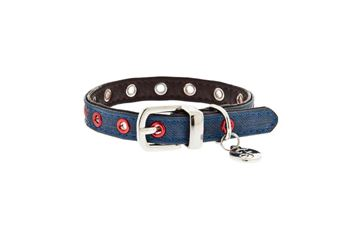Bild von EYES COLLAR WITH LEASH
