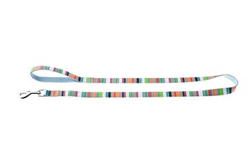 Bild von LEASH COLOR