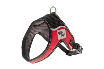 Bild von EVEREST HARNESS